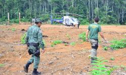 Fim do Fundo Amazônia pode afetar fiscalização do Ibama contra o desmatamento
