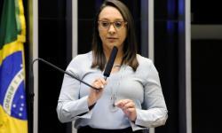 Maia e deputadas articulam derrubar veto de Bolsonaro em lei sobre violência contra mulher