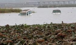 Tufão deixa ao menos 56 mortos e 15 desaparecidos no Japão