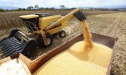 Mais de 2 mil produtores rurais são atendidos pela prefeitura em Canaã dos Carajás