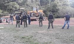 Segunda fase da Operação Amazônia Viva apreendeu quase 3.000 m³ de madeira em tora