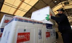 Pará recebe mais 180 mil e 100 doses de vacinas contra covid-19