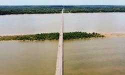 Ilha com vegetação de mangue nasce debaixo da ponte de Mosqueiro, em Belém