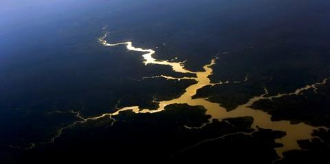 Brasil é o primeiro do mundo em potencial de descoberta de espécies.