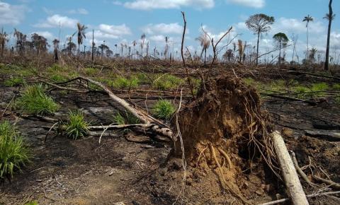 Fumaça de queimadas atinge reserva ambiental em São Felix do Xingu, no sudeste do Pará