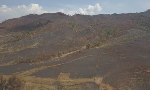 Combate a incêndios em Parque Nacional no PA já dura 12 dias; Governo Federal diz que fogo já foi extinto