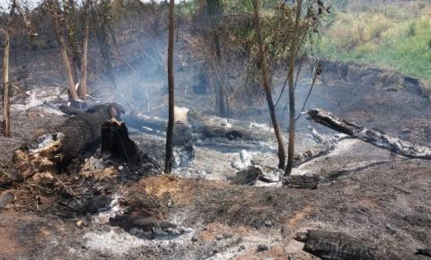 Trágico: incêndio destrói área de preservação em Canaã