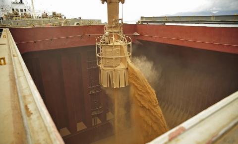 Importações de soja da China caem em setembro com menor demanda por ração animal