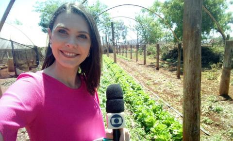 Paixão dos agricultores pela produção sustentável chama a atenção em Mato Grosso do Sul