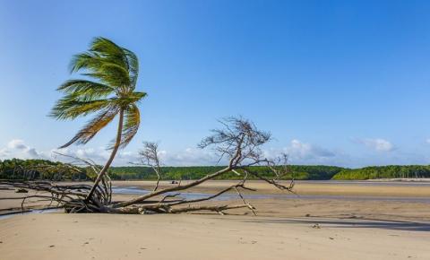 Ilha do Marajó