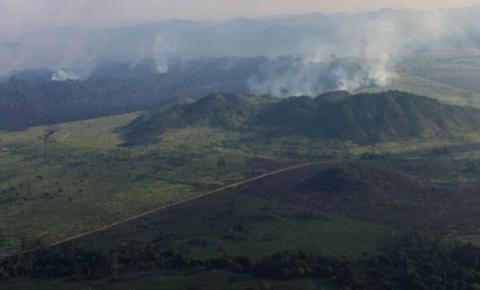 Pará é o 2º do Brasil que mais queimou em 36 anos